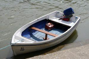 aquatic-1238422_640