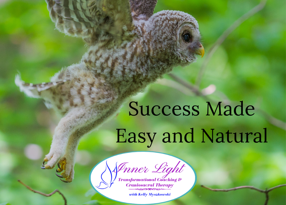 Success Made Easy and Natural